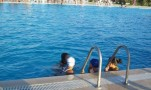 Yüzme Yarışmaları  2008