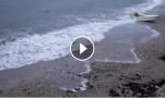 "İbrahim Durmuş "" Lalekent sahil 'de."""